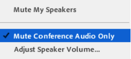 mute_conference_only.png